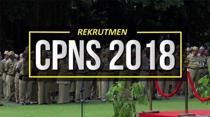 Rekruitmen CPNS 2018, Valid